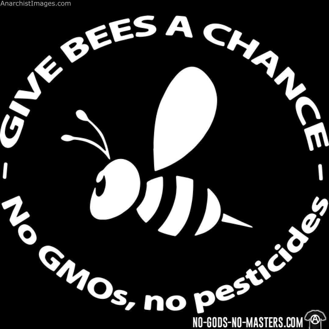 Give bees a chance - No GMO