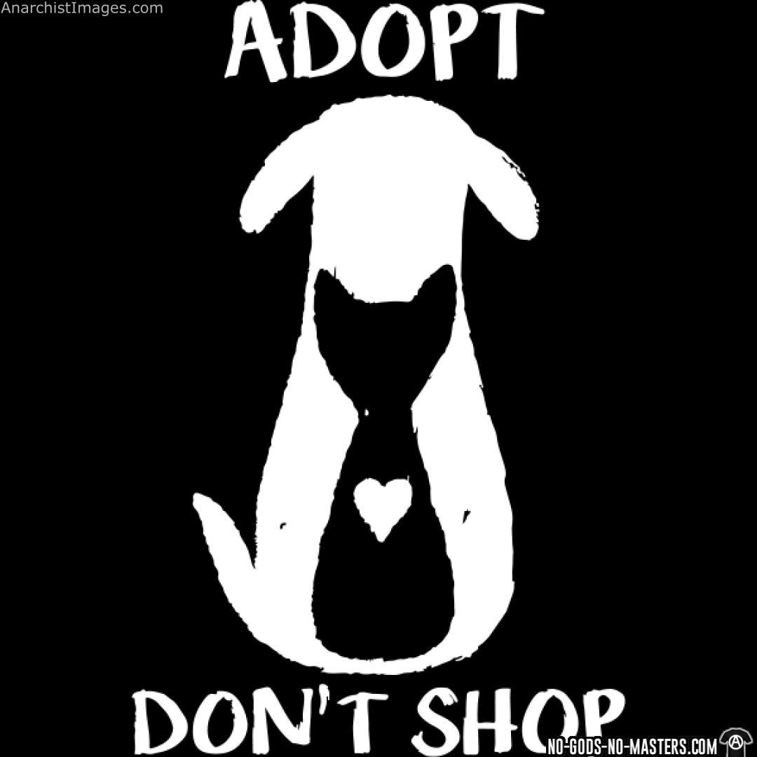 Adopt don